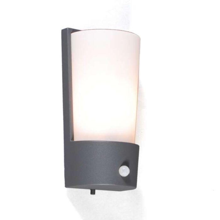 Lampe-d'extérieur-Laval-IR-graphite