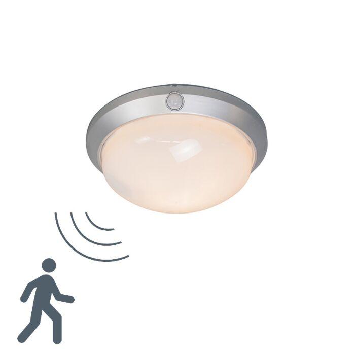 Plafonnier-Motion-I-gris-argenté-avec-détecteur-de-mouvement