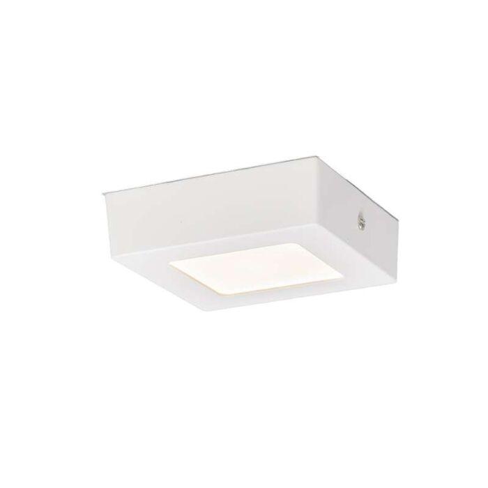 Plaque-de-plafond-6W-LED-carré-blanc